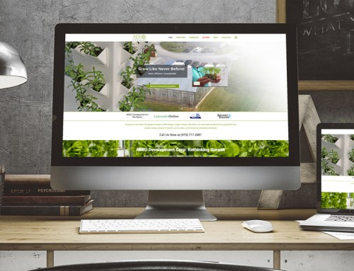 Aeroponics Growing Website and Marketing Plan